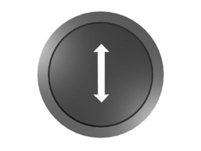 File:Polarizer with polarizing direction.jpg
